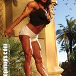 DENISE MASINO : LIVING MUSCLE ART
